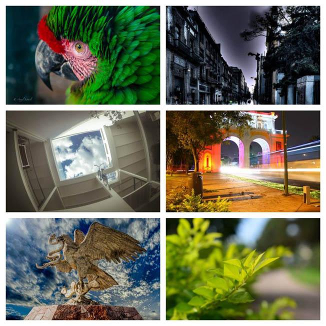 Metro Photo Challenge 2014 - Finalists (10)