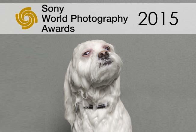 Sony World Photography Awards 2015
