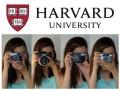 Curso gratuito (online) de fotografia da Universidade de Harvard